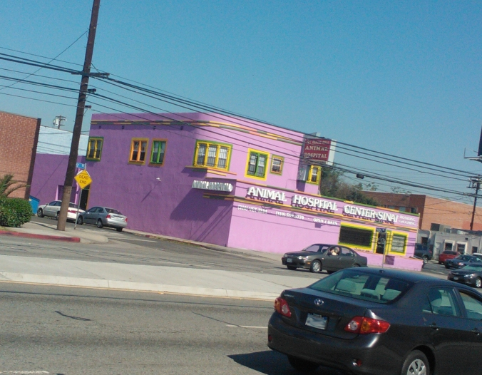 I run pass by this every day. It looks like it should be a Caribbean bed and breakfast or something.