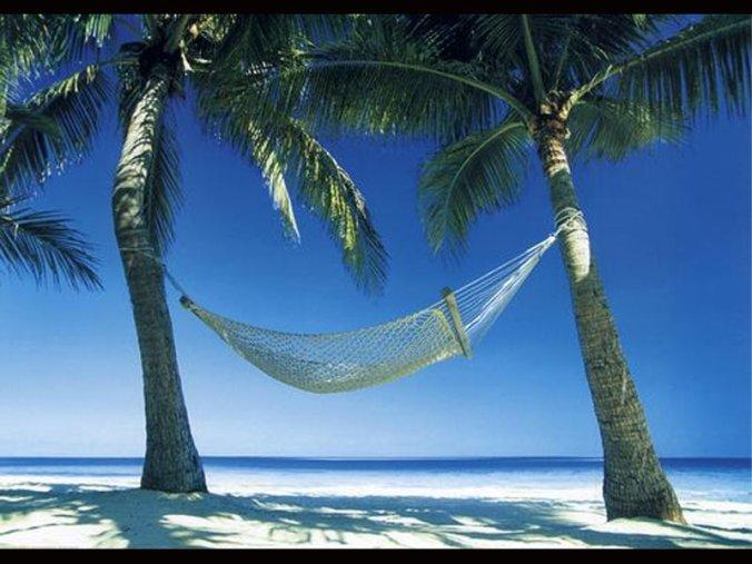 hammock-012